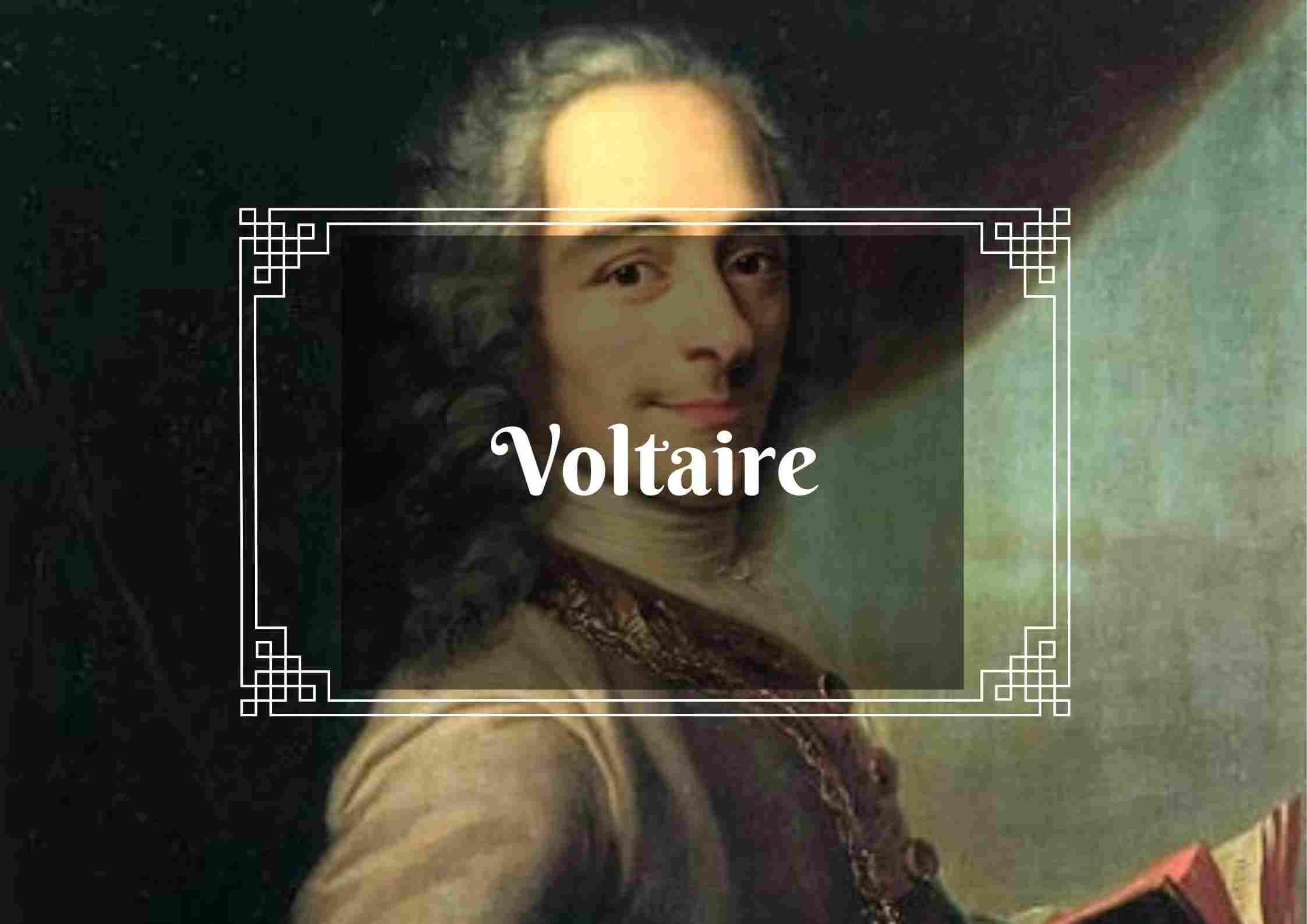 Voltaire libros pdf